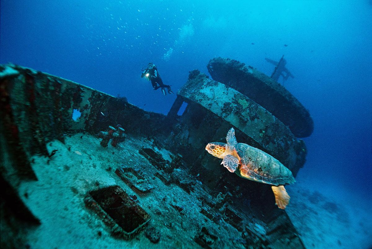OCEAN with WRECK TURTLE - Yucatek Divers