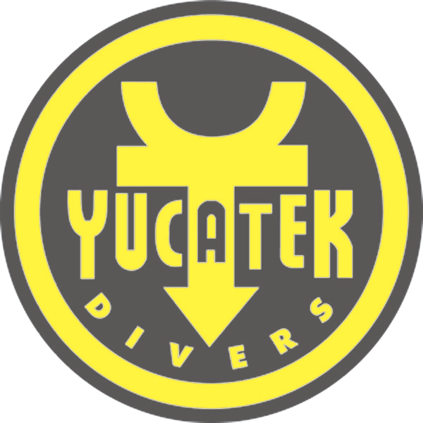 yucatek logo 2x2 300dpi remastered - Yucatek Divers